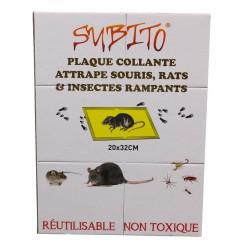 Plaque collante attrape souris rats et insectes rampants - Subito | Insecticide Antinuisible Qualité Professionnelle
