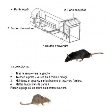 Piège à rats et souris pour capturer le rongeur vivant - Subito | Insecticide Antinuisible Qualité Professionnelle