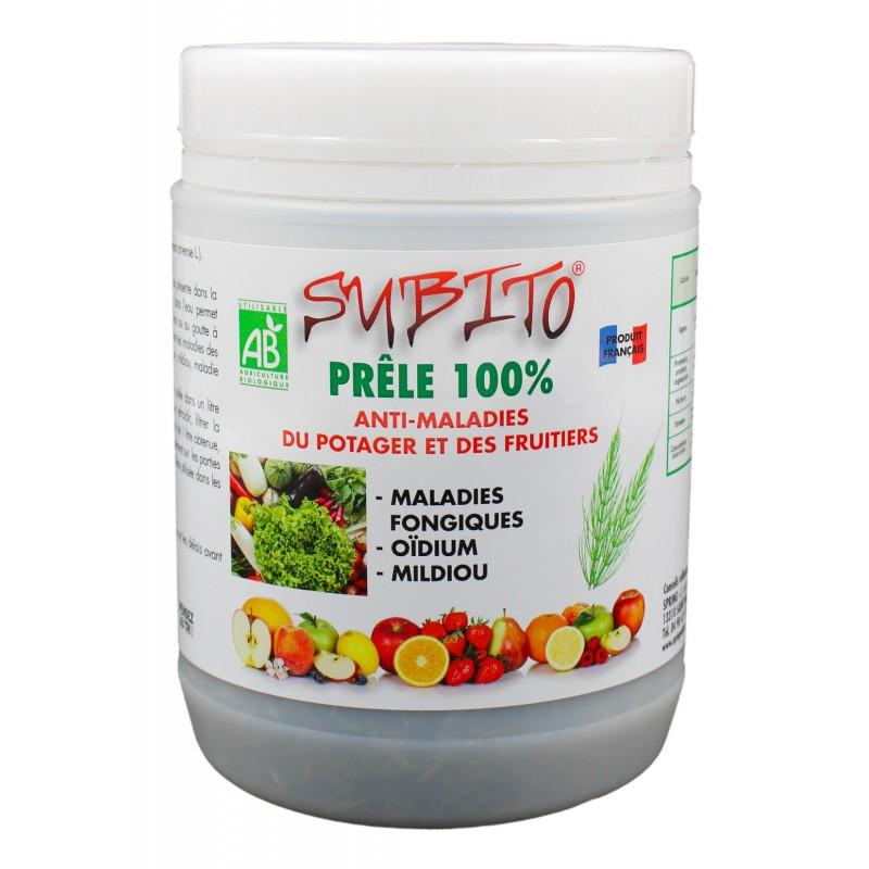 Prêle 100% anti-maladies du Potager et des Fruitiers Biologique 70g Subito| Insecticide Antinuisible Qualité Professionnelle
