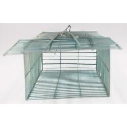 Insectovert Nasse à Rats de Subito | Insecticide Antinuisible Qualité Professionnelle